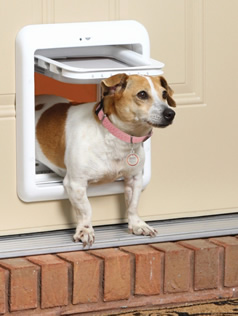 pet door repairs and installation
