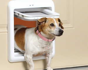 Pet door repairs - all types of pet door repairs