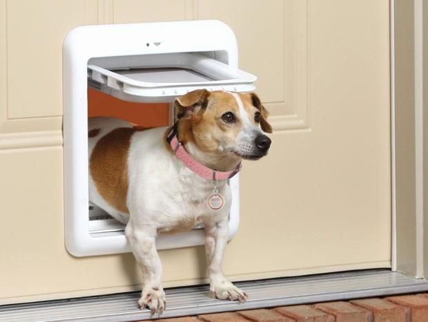 pet-door-repairs-and-installation-mobile